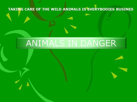 TAKING CARE OF THE WILD ANIMALS IS EVERYBODIES BUSINES ANIMALS IN DANGER.