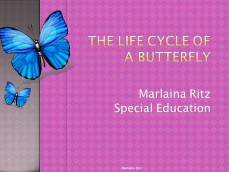 Marlaina Ritz Special Education Marlaina Ritz.  The Living environment  2.4  Students ask questions about a variety of living things and everyday events.