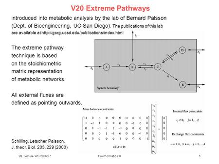 20. Lecture WS 2006/07Bioinformatics III1 V20 Extreme Pathways introduced into metabolic analysis by the lab of Bernard Palsson (Dept. of Bioengineering,