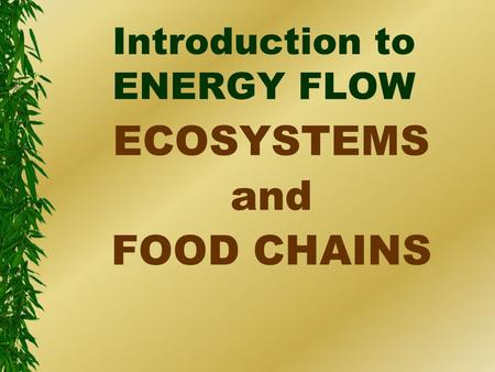 Introduction to ENERGY FLOW ECOSYSTEMS and FOOD CHAINS.
