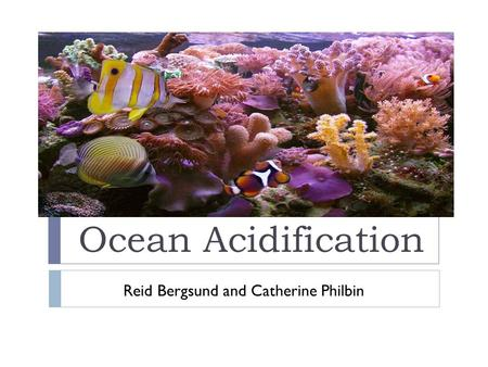 Ocean Acidification Reid Bergsund and Catherine Philbin
