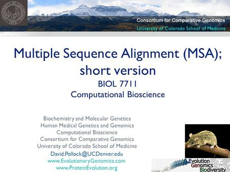 Biochemistry and Molecular Genetics Human Medical Genetics and Genomics Computational Bioscience Consortium for Comparative Genomics University of Colorado.