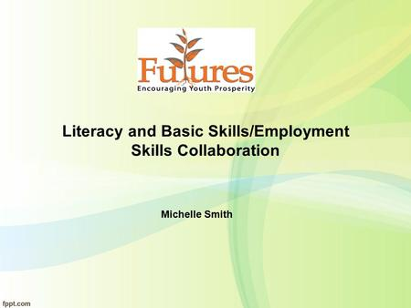 Literacy and Basic Skills/Employment Skills Collaboration Michelle Smith.