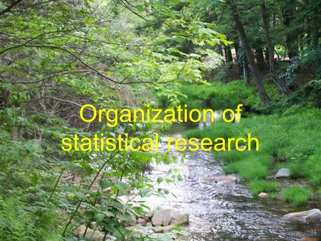 Organization of statistical research. The role of Biostatisticians Biostatisticians play essential roles in designing studies, analyzing data and.