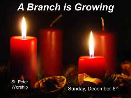 A Branch is Growing St. Peter Worship Sunday, December 6 th.