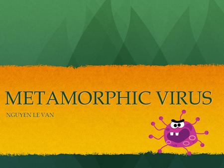 METAMORPHIC VIRUS NGUYEN LE VAN. OUTLINE 1.Introduction 2.Metamorphic techniques 3.Metamorphic virus detection 4.Conclusions 5.Bibliography 2.