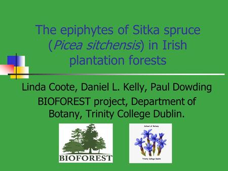 The epiphytes of Sitka spruce (Picea sitchensis) in Irish plantation forests Linda Coote, Daniel L. Kelly, Paul Dowding BIOFOREST project, Department of.