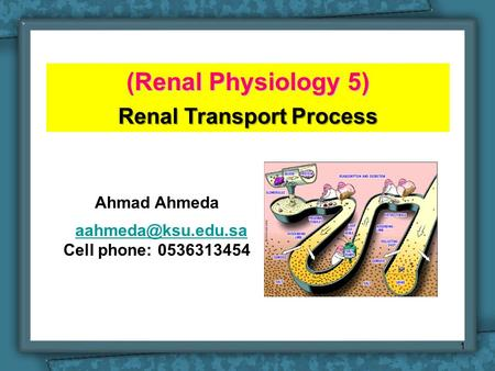 (Renal Physiology 5) Renal Transport Process Ahmad Ahmeda Cell phone: 0536313454 1.