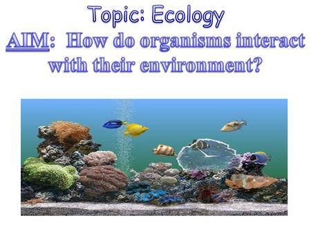 is the scientific study of the interactions between organisms and their environment.