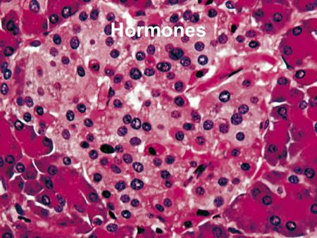 Hormones. Teen Steroids In The News Hormones Chemical messengers Produced in one part of the body, have an effect on another part Carried in bloodstream.