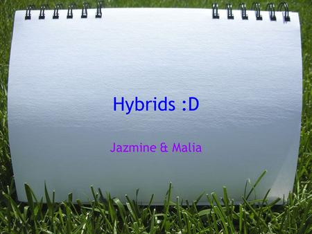 Hybrids :D Jazmine & Malia. PRO'S Hybrids are likely to make use of other technologies, including hydrogen fuel cells and possibly even steam power. Hybrid.