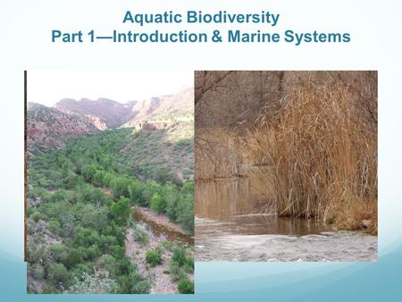 Aquatic Biodiversity Part 1—Introduction & Marine Systems.