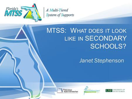 MTSS: W HAT DOES IT LOOK LIKE IN SECONDARY SCHOOLS? Janet Stephenson.