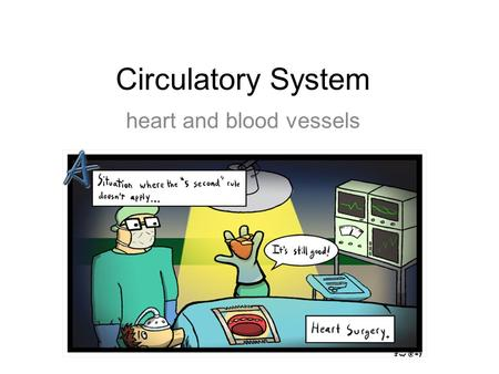 Circulatory System heart and blood vessels. Systemic Circulation – delivers blood to all body cells and carries away waste Pulmonary Circulation – eliminates.