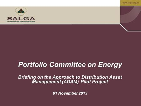 Www.salga.org.za Portfolio Committee on Energy Briefing on the Approach to Distribution Asset Management (ADAM) Pilot Project 01 November 2013.