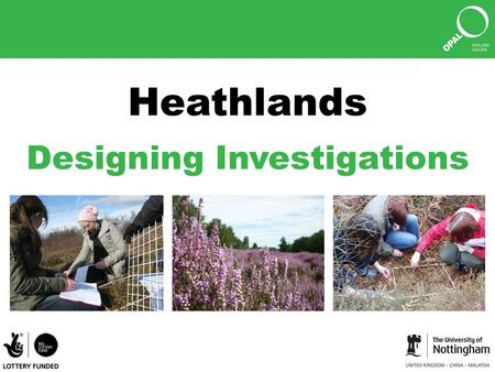 Heathlands Designing Investigations © Amy Rogers.