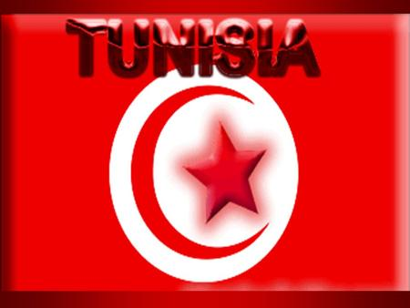 Surrounding countries Algeria Libya Capital Tunis Map of Tunisia.