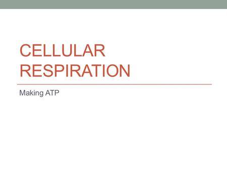 CELLULAR RESPIRATION Making ATP. The Purpose Convert the energy in organic molecules into a usable form (ATP) ATP can then be used for work.