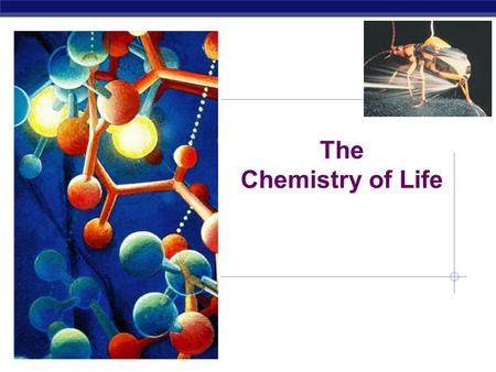 The Chemistry of Life Why are we studying chemistry? Chemistry is the foundation of Biology.
