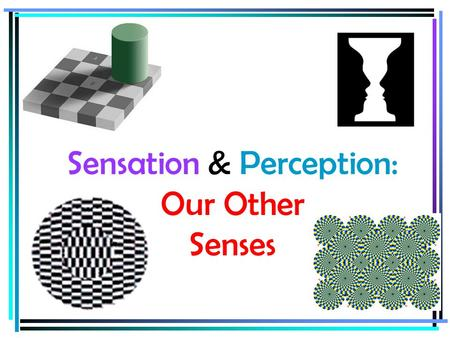 Sensation & Perception: Our Other Senses. Goals  Describe how our senses of touch, taste, and smell interact to form our perceptions.