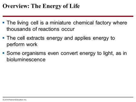 Overview: The Energy of Life  The living cell is a miniature chemical factory where thousands of reactions occur  The cell extracts energy and applies.