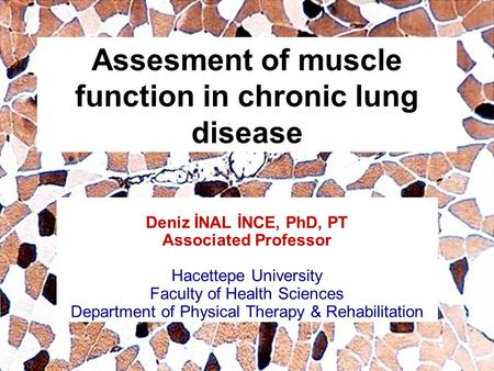 Assesment of muscle function in chronic lung disease Deniz İNAL İNCE, PhD, PT Associated Professor Hacettepe University Faculty of Health Sciences Department.