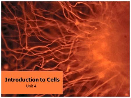 "Introduction to Cells Unit 4. PRE-WARM UP: Start a new Table of Contents – ""Life Science – Biology"" Write your homework – leave it to be stamped MAKE."