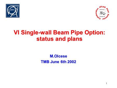 1 VI Single-wall Beam Pipe Option: status and plans M.Olcese TMB June 6th 2002.