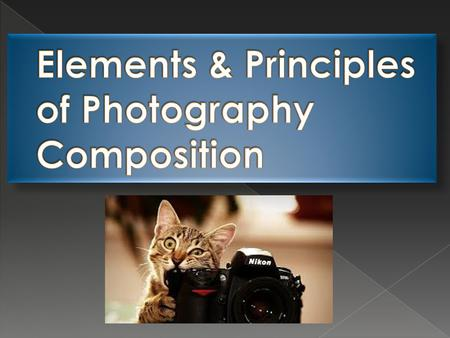 photographer's ability to create an image that intrigues & interests the viewer enough so they continue looking, examining, and/or interpreting the image.