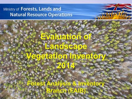 Evaluation of Landscape Vegetation Inventory 2014 Forest Analysis & Inventory Branch (FAIB)