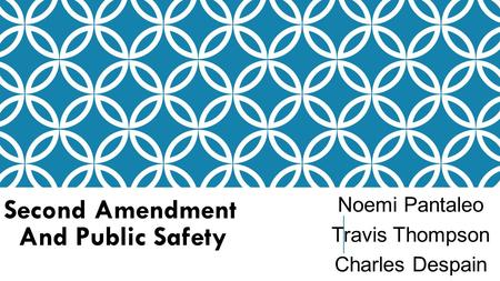 Second Amendment And Public Safety Noemi Pantaleo Travis Thompson Charles Despain.