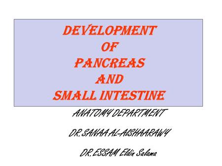 Development of pancreas and Small Intestine ANATOMY DEPARTMENT DR.SANAA AL-AlSHAARAWY DR.ESSAM Eldin Salama.