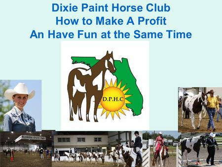 Dixie Paint Horse Club How to Make A Profit An Have Fun at the Same Time.