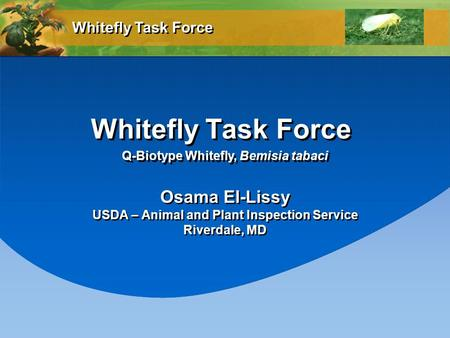 Whitefly Task Force Osama El-Lissy USDA – Animal and Plant Inspection Service Riverdale, MD Osama El-Lissy USDA – Animal and Plant Inspection Service Riverdale,