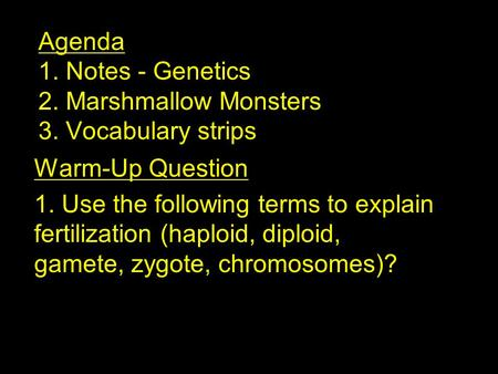 Agenda 1. Notes - Genetics 2. Marshmallow Monsters 3. Vocabulary strips Warm-Up Question 1. Use the following terms to explain fertilization (haploid,