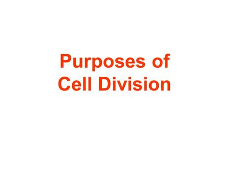Purposes of Cell Division. Purposes of in HumansCellCell DivisionDivision fold cut.