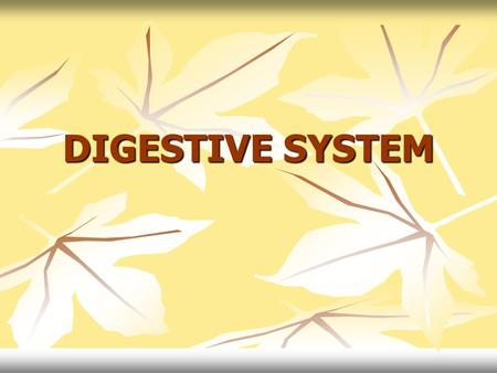 DIGESTIVE SYSTEM. DIGESTIVE SYSTEM 4 Stages of Food Processing INGESTIONAct of eating and drinking DIGESTION (2 Types) Process of breaking down food into.