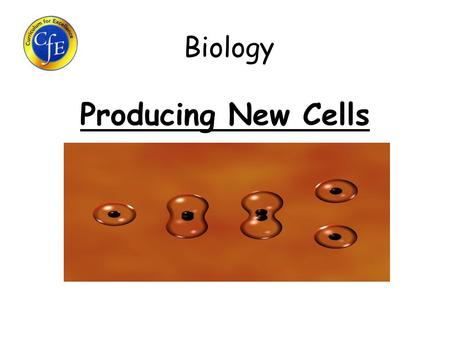 Biology Producing New Cells. Learning Intentions 1.Why do cells need to make new copies of themselves? 2.What is found inside the nucleus? 3.What are.