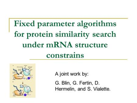 Fixed parameter algorithms for protein similarity search under mRNA structure constrains A joint work by: G. Blin, G. Fertin, D. Hermelin, and S. Vialette.