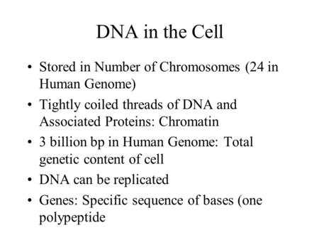 DNA in the Cell Stored in Number of Chromosomes (24 in Human Genome) Tightly coiled threads of DNA and Associated Proteins: Chromatin 3 billion bp in Human.