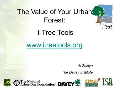 The Value of Your Urban Forest: