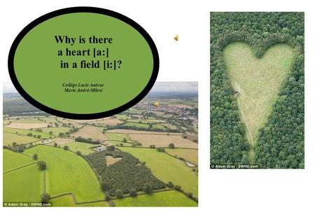 Why is there a heart [a:] in a field [i:]? Collège Lucie Aubrac Marie André-Milesi.