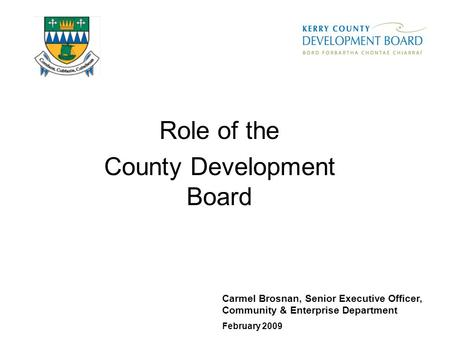 Role of the County Development Board Carmel Brosnan, Senior Executive Officer, Community & Enterprise Department February 2009.