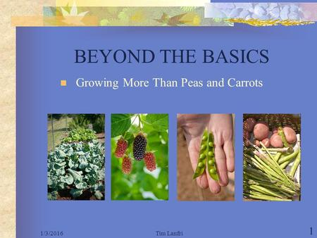 1/3/2016Tim Lanfri 1 BEYOND THE BASICS Growing More Than Peas and Carrots.