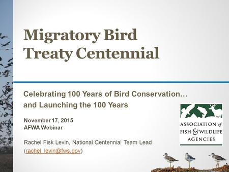 Migratory Bird Treaty Centennial Celebrating 100 Years of Bird Conservation… and Launching the 100 Years November 17, 2015 AFWA Webinar Rachel Fisk Levin,