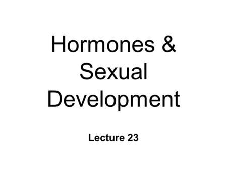 Hormones & Sexual Development Lecture 23. Sexual Dimorphism n Two forms l male and female n What determines your sex? ~