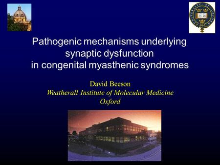 David Beeson Weatherall Institute of Molecular Medicine Oxford Pathogenic mechanisms underlying synaptic dysfunction in congenital myasthenic syndromes.