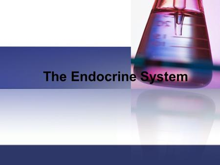 The Endocrine System. System Overview Includes cells, tissues, and organs that secrete hormones directly into the body fluids Endocrine vs. exocrine.