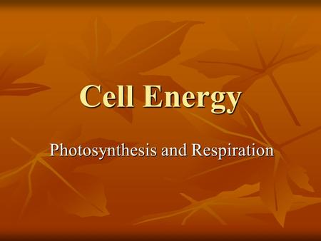 Cell Energy Photosynthesis and Respiration. How do Cells Store Energy? Adenosine Triphosphate (ATP) – the molecule where the energy is stored for cell.