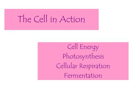 The Cell in Action Cell Energy Photosynthesis Cellular Respiration Fermentation.